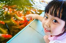 Close-Up Portrait Of Cute Girl Feeding Koi Carps In Pond