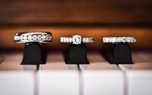 Close-Up Of Diamond Rings On P...