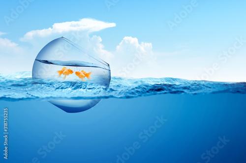Fotografia, Obraz Fishbowl with goldfish floating on the ocean