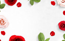 The Frame Of Red And Pink Rose...