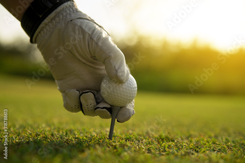 Fototapeta Cropped Hand Of Man Holding Golf Ball On Tee