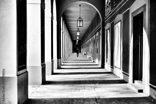 Fotografie, Tablou Colonnade In Corridor