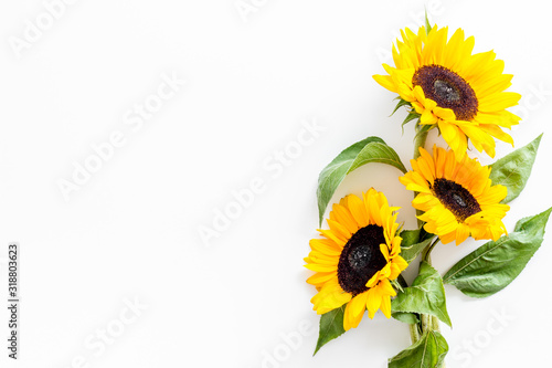 Obraz na płótnie Bouquet of sunflowers on white background top-down copy space