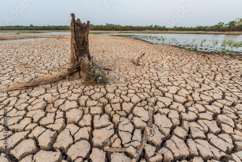 Fototapeta Brown drought dry land soil or cracked ground texture