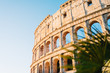 Rome, Italy - Jan 2, 2020: The Colosseum in Rome, Italy
