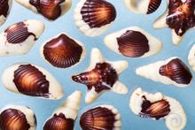 Beautiful Chocolate Shells, Mi...