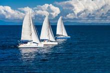 Three Sailboats Racing
