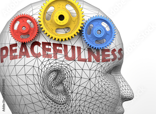 Peacefulness and human mind - pictured as word Peacefulness inside a head to sym Wallpaper Mural