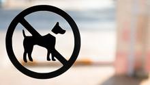 No Dog Sign On Glass Door Of C...