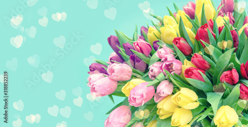 Tulip Flowers hearts turquoise background toned Wallpaper Mural