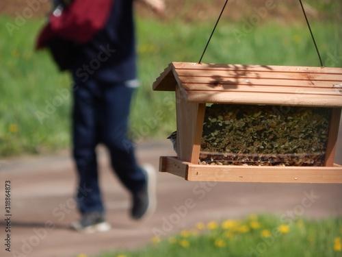 Fotografering Birdhouse Hanging Against Man