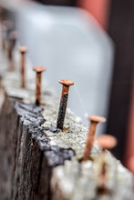 Rusty And Crooked Steel Nail In Wooden Plank