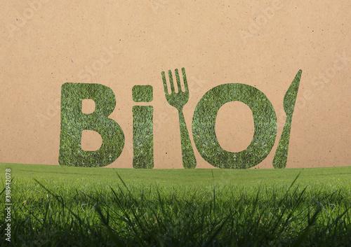 Fototapeta Bio, lettres bio dans l'herbe, concept obraz