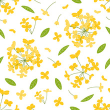 Bright Doodle Floral Pattern Background With Fragrant Tea Olive, Sweet Olive Or Osmanthus Fragrans And Evergreen Foliage. Hand Drawn Flower Cluster Background.  Great For Wallpaper, Textile, Fabric.