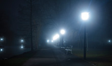 Scary Foggy Night In The Park