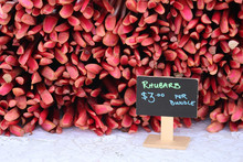Rhubarbs For Sale At Market