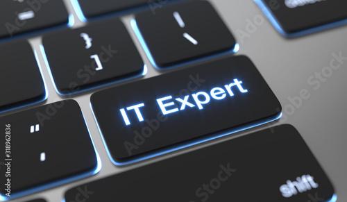 It expert text on keyboard button. Fototapeta