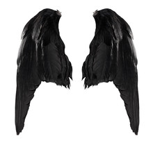 Two Big Black Raven Wings With...