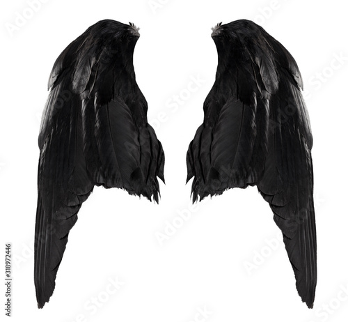 two big black raven wings with big feathers isolated on white background Wall mural