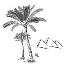Palm Trees And Egypt Pyramids In The Desert On A Background. Hand Drawn Vector Illustration. Sketch