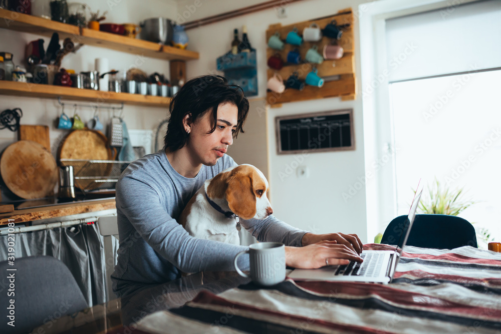 Fototapeta young man holding his dog in nap while using laptop in kitchen