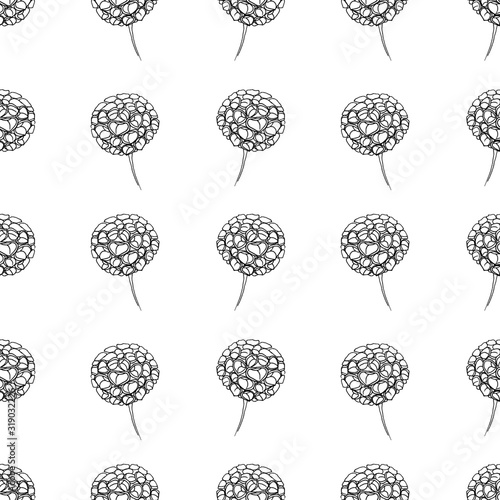 Zinnia flowers pattern. The illustration is drawn in black liner. Idea for packaging, gift decoration, children's art, coloring book, wallpaper.