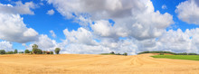 Summer Rural Landscape, Panora...