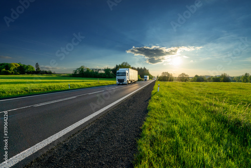 Vászonkép White trucks arriving from a distance on an asphalt road in rural landscape at s