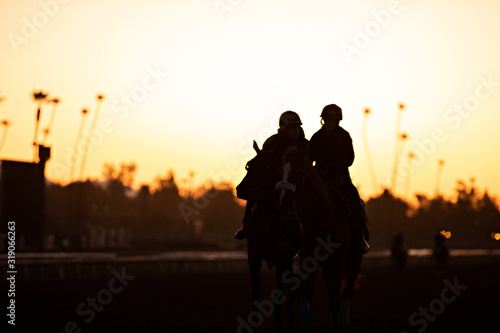racehorse and pony silhouette Canvas Print