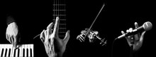 Four Parts Of Musician Hands P...