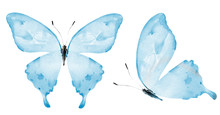 Two Watercolor Butterflies , I...