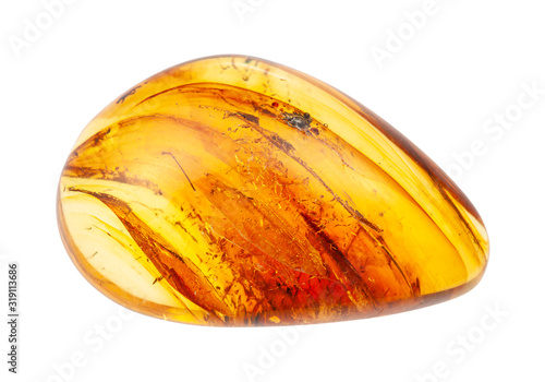 Photographie polished Amber gem with inclusions isolated