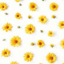 Flat Lay Yellow Daisy Flower B...
