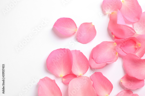 Fototapeta Fresh pink rose petals on white background, top view obraz