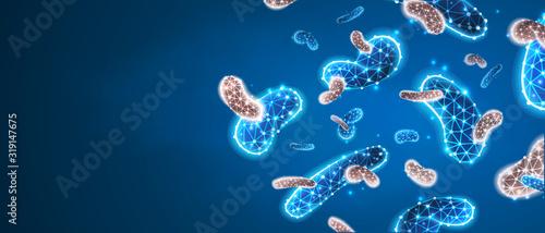 Photo Bacteria probiotics