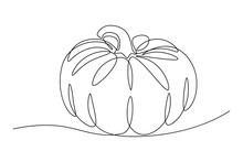 Pumpkin In Continuous Line Art...