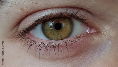 Obraz Extreme Close-Up Of Human Eye - fototapety do salonu