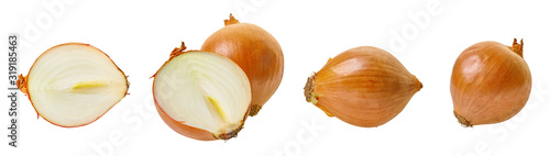 Obraz set of onion vegetable with clipping path - fototapety do salonu