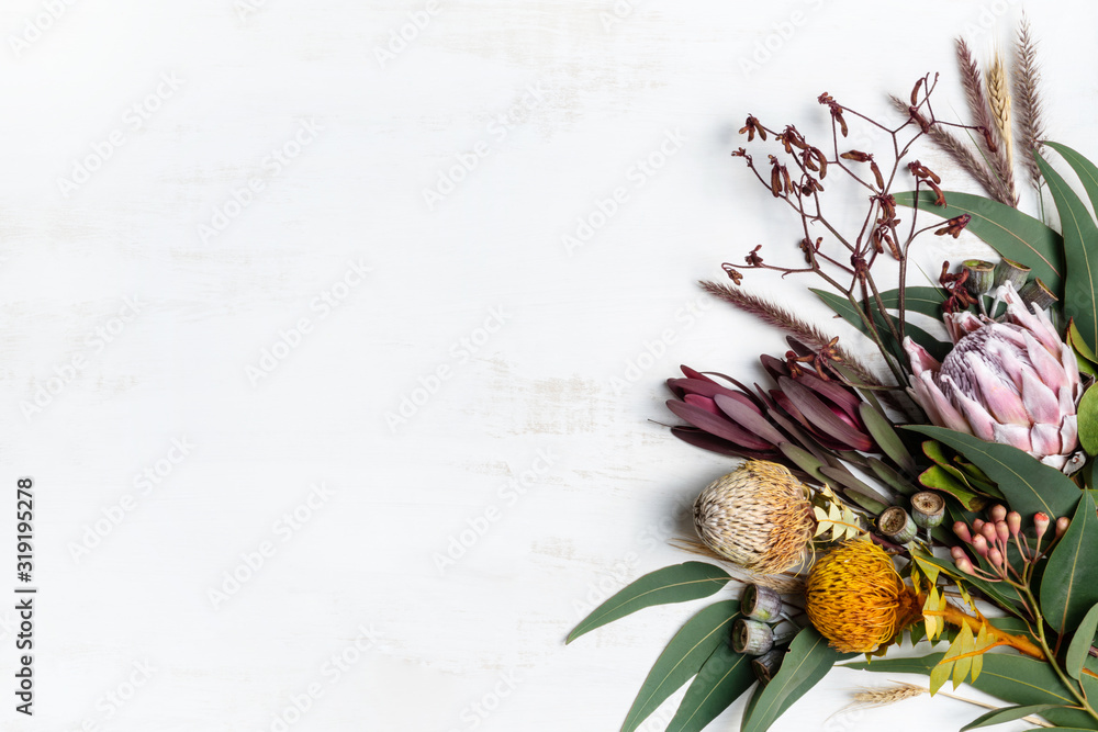 Fototapeta Beautiful flat lay floral arrangement of mostly Australian native flowers, including protea, banksia, kangaroo paw eucalyptus leaves and gum nuts on a white background.
