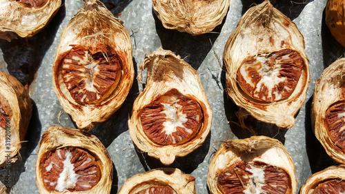 close-up dried areca nut, betel nut, thailand Wallpaper Mural