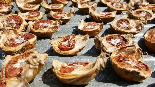 close-up dried areca nut, betel nut, thailand Canvas Print