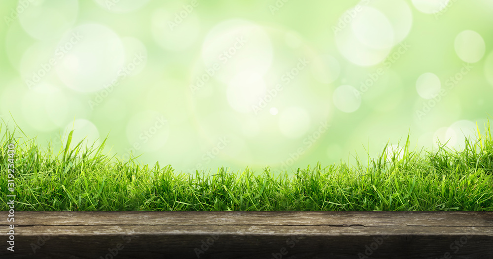 Fototapeta A fresh spring sunny garden background of green grass and blurred foliage bokeh with a wooden table to place cut out products on.