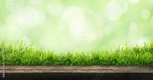 Obraz A fresh spring sunny garden background of green grass and blurred foliage bokeh with a wooden table to place cut out products on. - fototapety do salonu