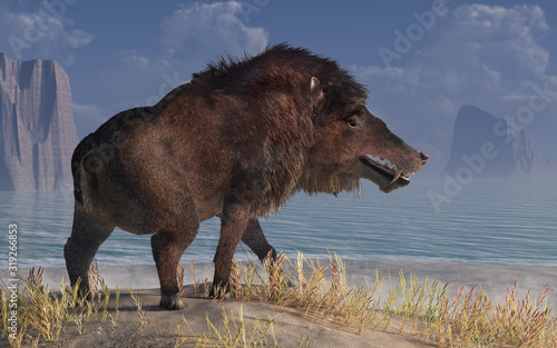 Valokuva Andrewsarchus, an extinct creature of the Eocene period, was possibly the largest carnivorous land mammal ever, known only from a single fossil skull found in Mongolia