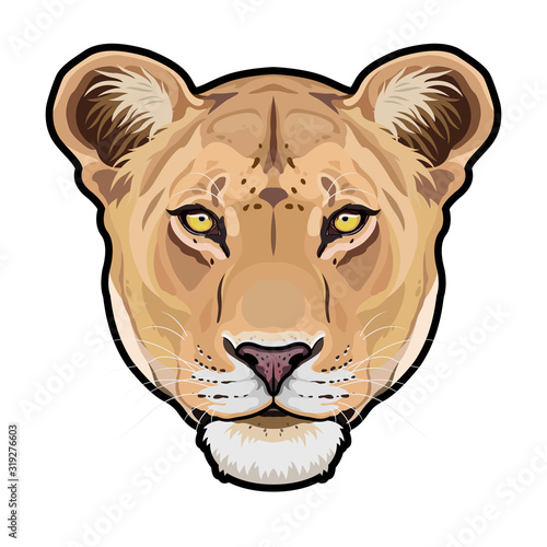 Lioness animal cute face Wallpaper Mural