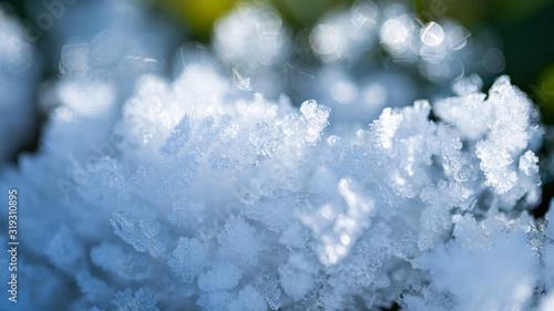 Fototapeta Fresh winter snow closeup of crystals. Shallow depth of field. Winter background obraz na płótnie