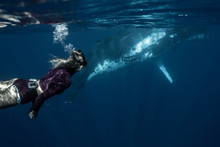 Woman Swimming With Humpback W...