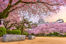 Himeji, Japan At Himeji Castle...