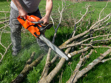 Man Cutting Tree Limbs With Ch...