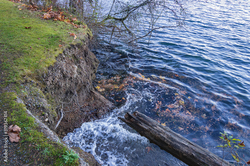 Fotomural erosion caused by water near grassy edge over puget sound